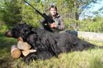Iber Hunts oso negro Quebec